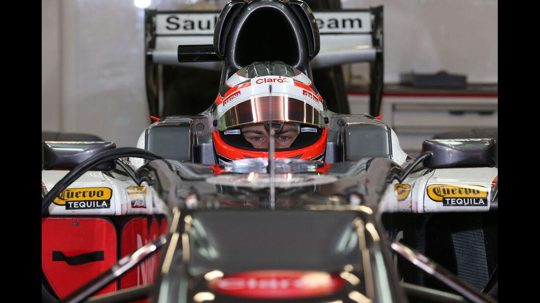 Nico Hülkenberg - Barcelona F1 Test 2013