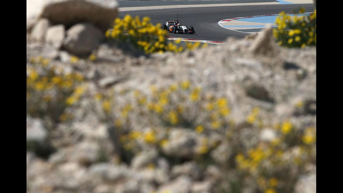 Nico Hülkenberg - Force India - Formel 1 - Bahrain - Test - 19. Februar 2014