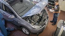 Nissan Qashqai+2, Gebrauchtwagen-Check, asv2218
