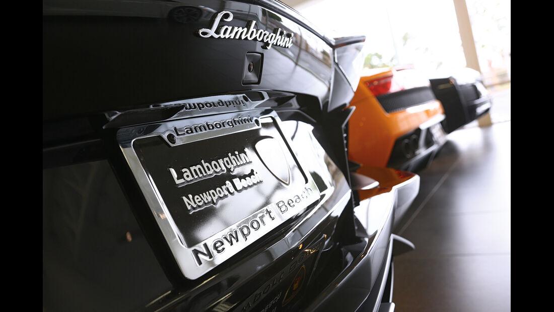 Nobel-Verkäufer, Lamborghini, Modelle