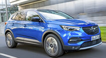 Opel Grandland X, Best Cars 2020, Kategorie I Kompakte SUV/Geländewagen