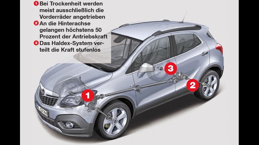 Opel Mokka 1.4 Turbo 4X4, Igelbild, Grafik