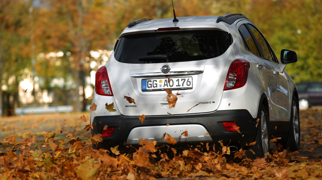 Opel Mokka 1.4 Turbo 4x4, Heckansicht