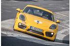 Perfektionstraining 2013, Porsche Cayman S