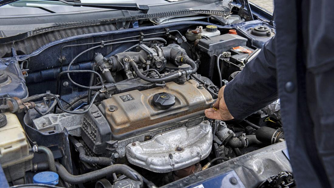 Peugeot 306 Cabrio 1.6, Motor