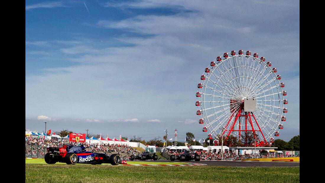 Pierre Gasly - Toro Rosso - Formel 1