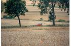 Polen, Weizenfelder