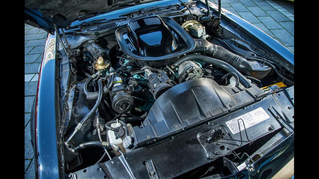 Pontiac Firebird Trans Am, Motor