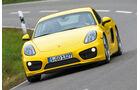 Porsche Cayman, Bi-Xenon-Brenner