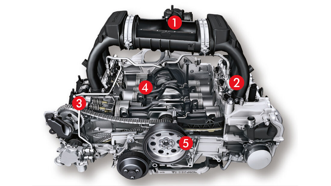 Porsche Cayman, Motor, Igelbild