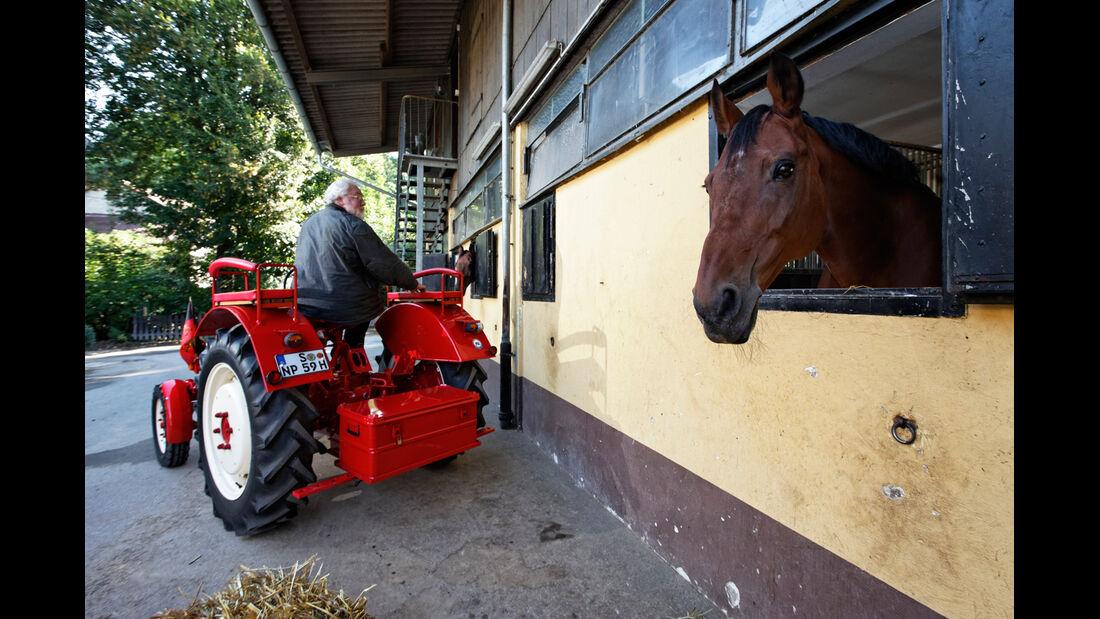 Porsche Trecker, Heckansicht, Pferd