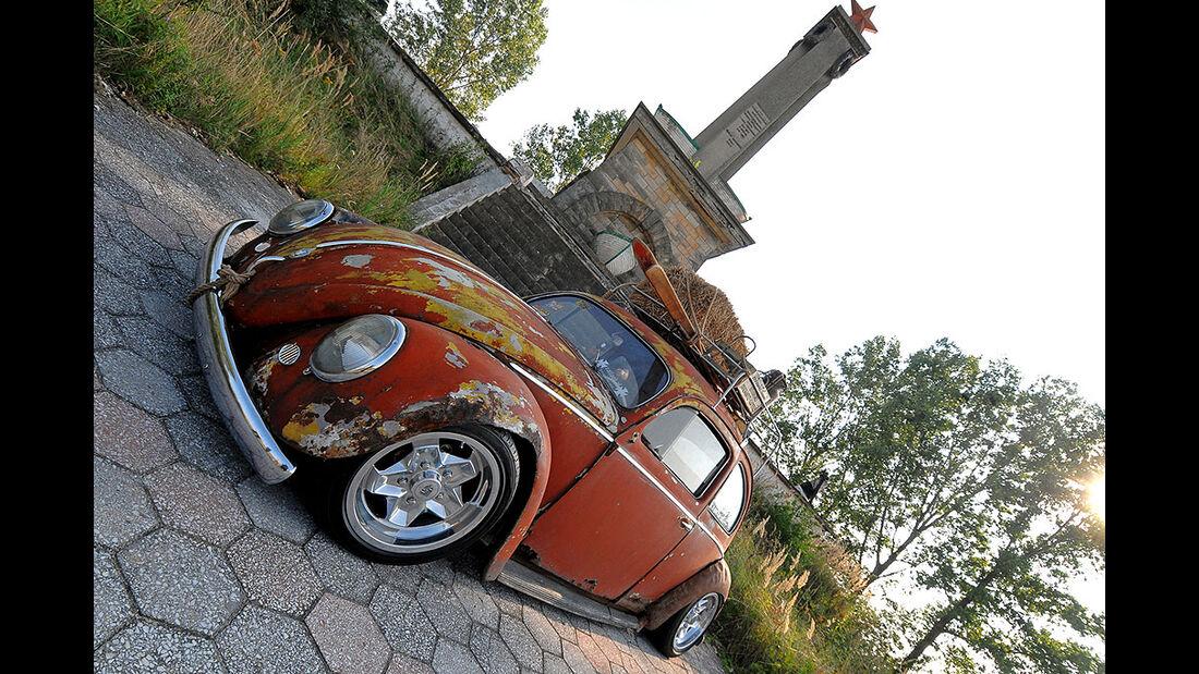 Rat Style Käfer