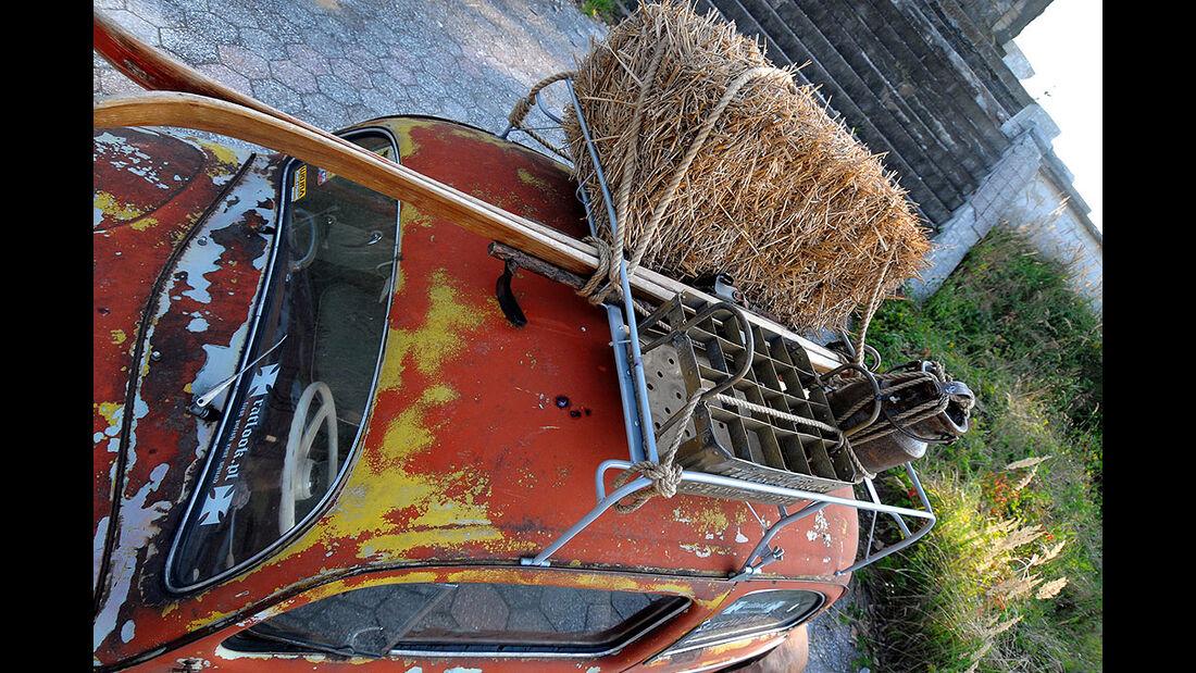 Rat Style Käfer - Dachgepäckträger