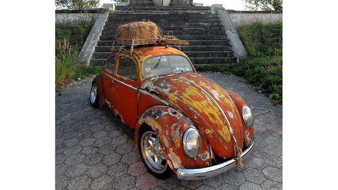 Rat Style Käfer - Frontansicht
