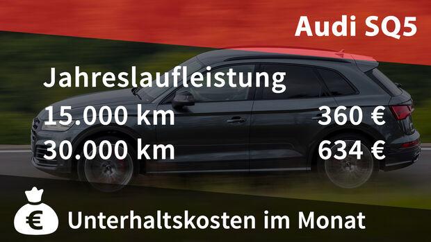 Realverbrauch Kosten Audi SQ5