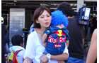 Red Bull-Fan - Formel 1 - GP Japan - Suzuka - 10. Oktober 2013