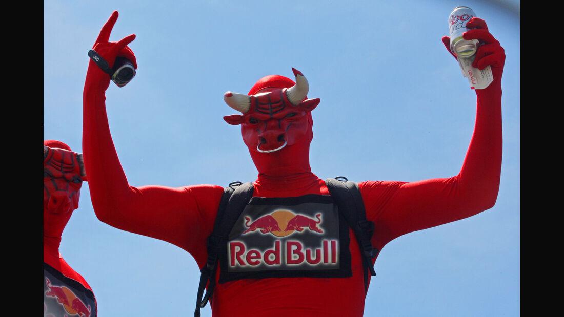 Red Bull-Fan - GP Kanada 2014
