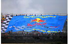 Red Bull-Fans - Formel 1 - GP Brasilien - 22. November 2013