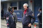 Red Bull - Formel 1-Test - Jerez - 2. Februar 2015