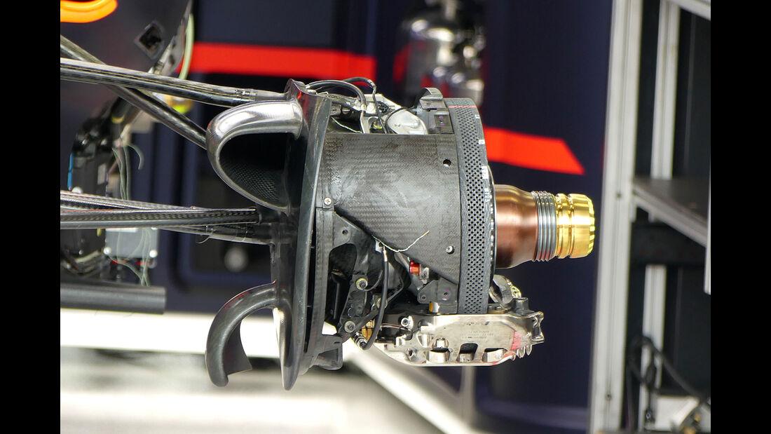 Red Bull - GP Singapur - Formel 1 - Donnerstag - 14.9.2017