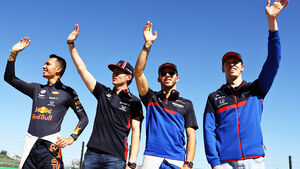 Red Bull & Toro Rosso Piloten 2019