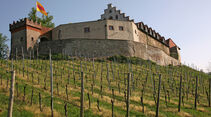 Rheintal, Burg, Weinberg