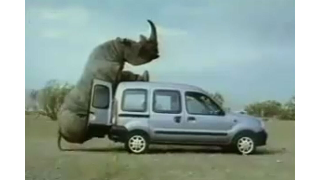 Rhinozerus Renault Kangoo