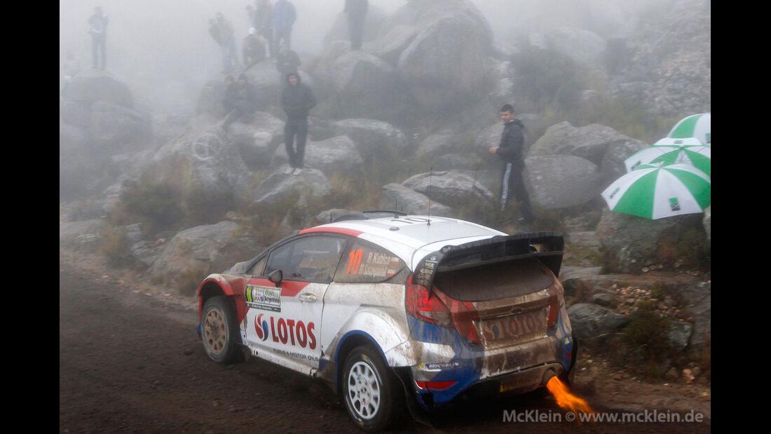 Robert Kubica - Rallye Argentinien - WRC 2014