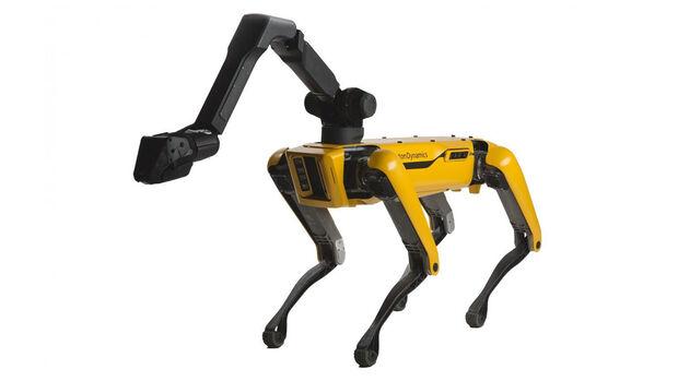 Roboterhund Spot