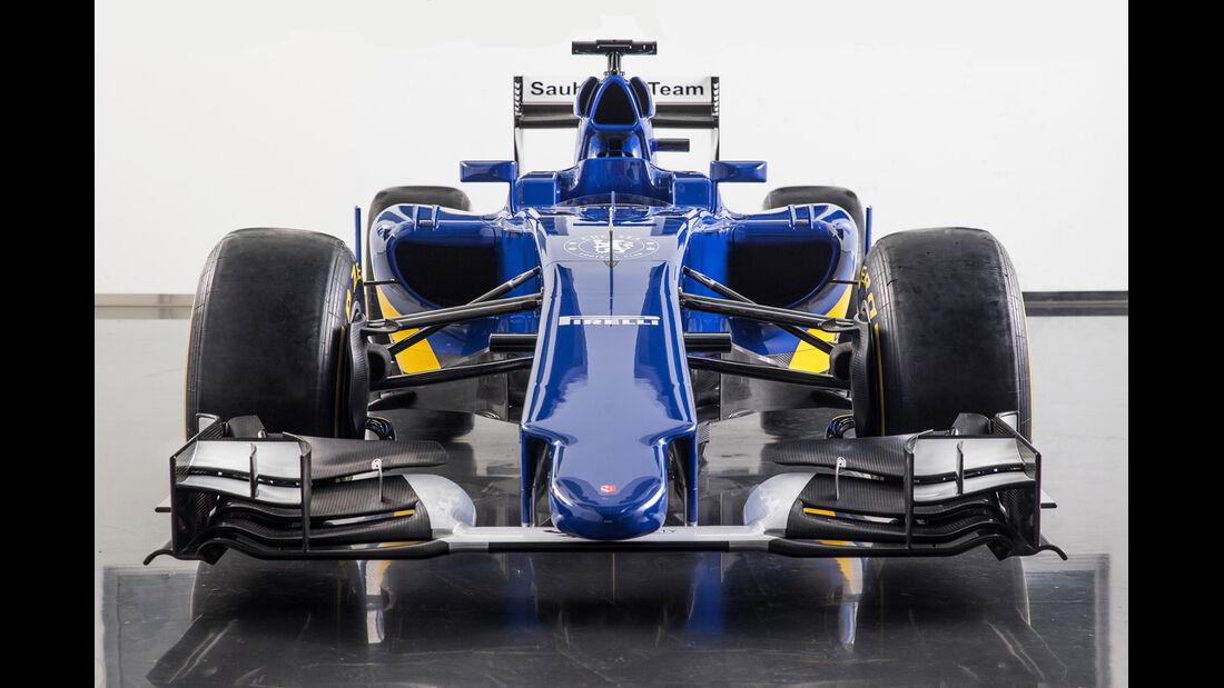 Sauber - Formel 1-Nasen 2015