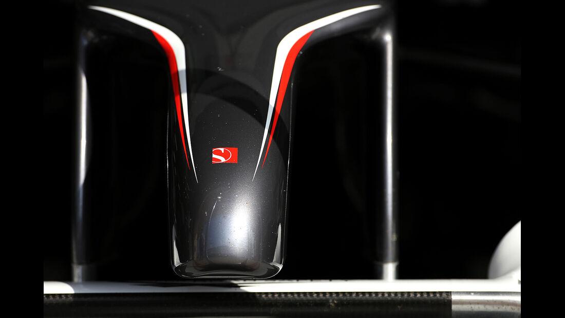 Sauber - Formel 1 - Test - Bahrain - 28. Februar 2014