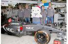 Sauber - GP Russland 2014