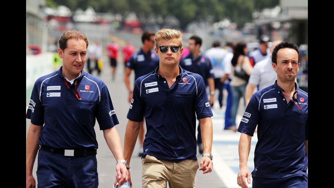 Sauber - Marcus Ericsson - Formel 1 - GP Brasilien- 12. November 2015