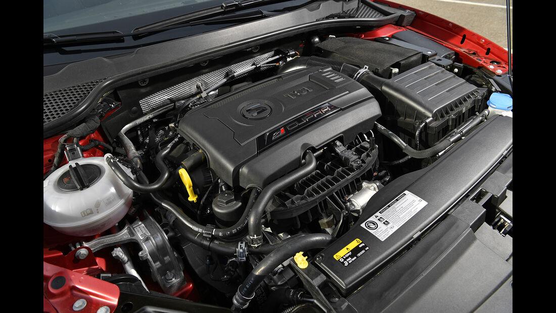 Seat Leon Cupra 300, Motor