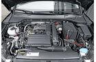 Seat Leon - Kaufberatung - TGI - Erdgas