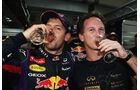 Sebastian Vettel - GP Indien 2013