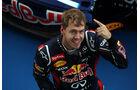 Sebastian Vettel GP Japan 2012