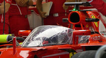 Shield - Ferrari - Formel 1 - GP England - 13. Juli 2017