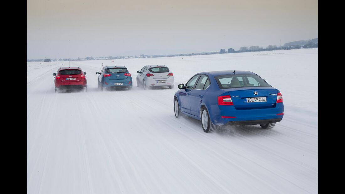 Skoda Octavia, Ford Focus, Hyundai i30, Opel Astra, Heckansicht