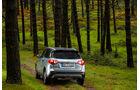 Suzuki Vitara S, Fahrbericht