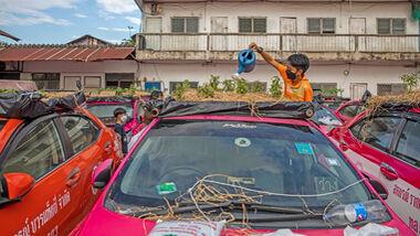 Thailand Taxi Gemüsegarten
