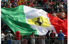 Tifosi - GP Italien - Monza - 10. September 2011