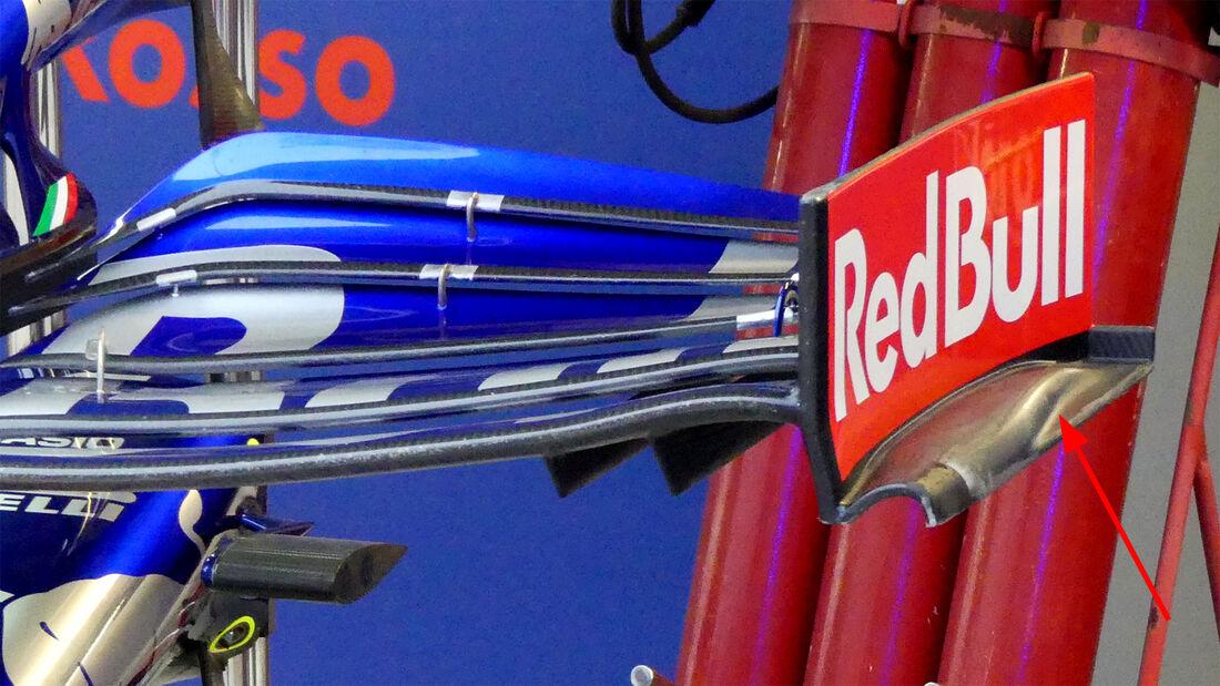 Toro Rosso - F1-Technik 2019 - Frontflügel