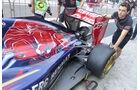 Toro Rosso - Formel 1 - GP Abu Dhabi - 20. November 2014