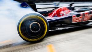 Toro Rosso - GP Russland 2016