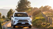 Toyota RAV4 4x4 Hybrid, Fahrbericht, außen front fahrt
