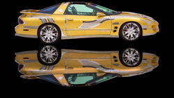 Trans Am Gold  null