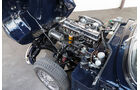 Triumph-GT6-Motor