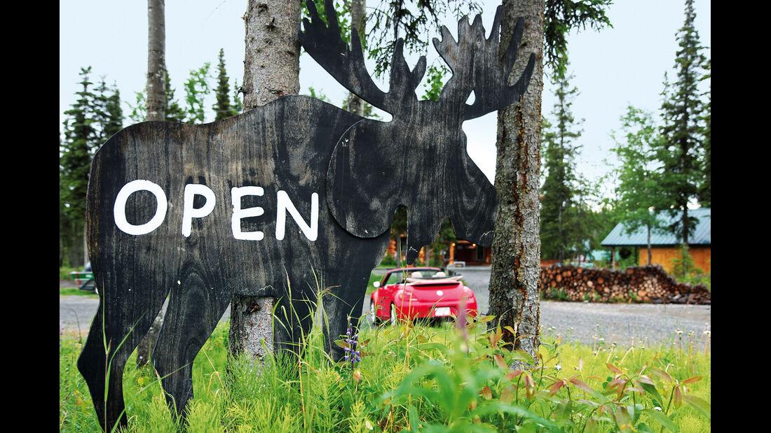 VW Beetle, Alaska, Elch, Schild
