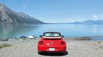 VW Beetle, Alaska, See